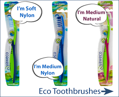 eco friendly dental care - toothbrush, replaceable heads, dental floss